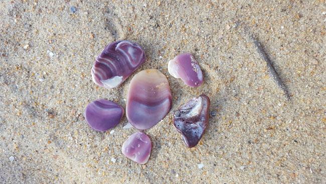 A Beachcomber's View: A Closer Look at Wampum | Island Free Press